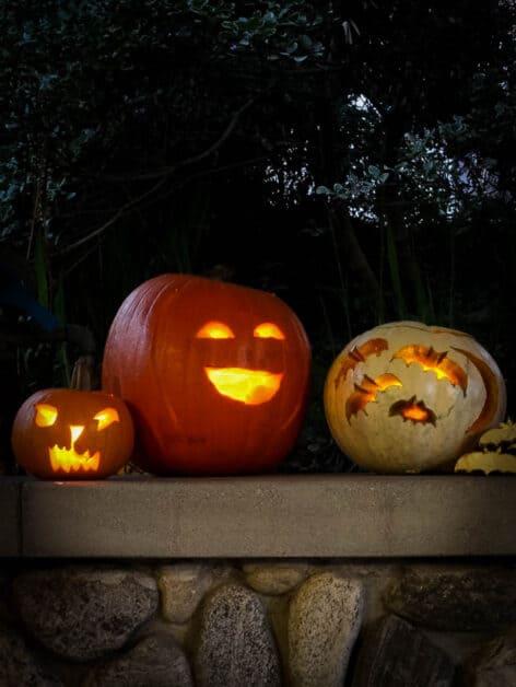 Jack-o'-Lantern Pumpkins halloween