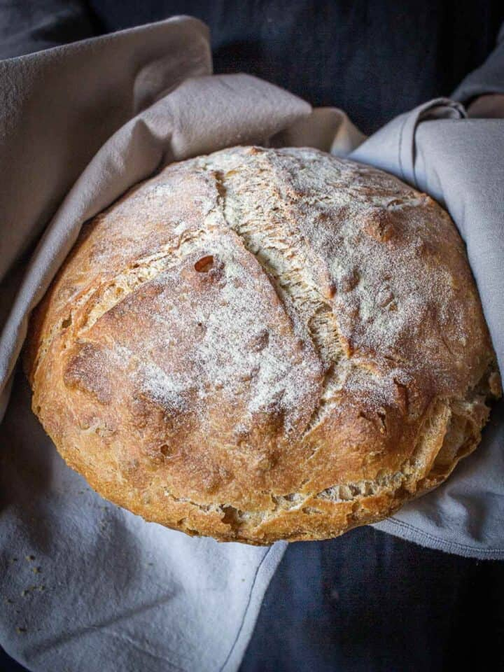 pagnotta bread loaf