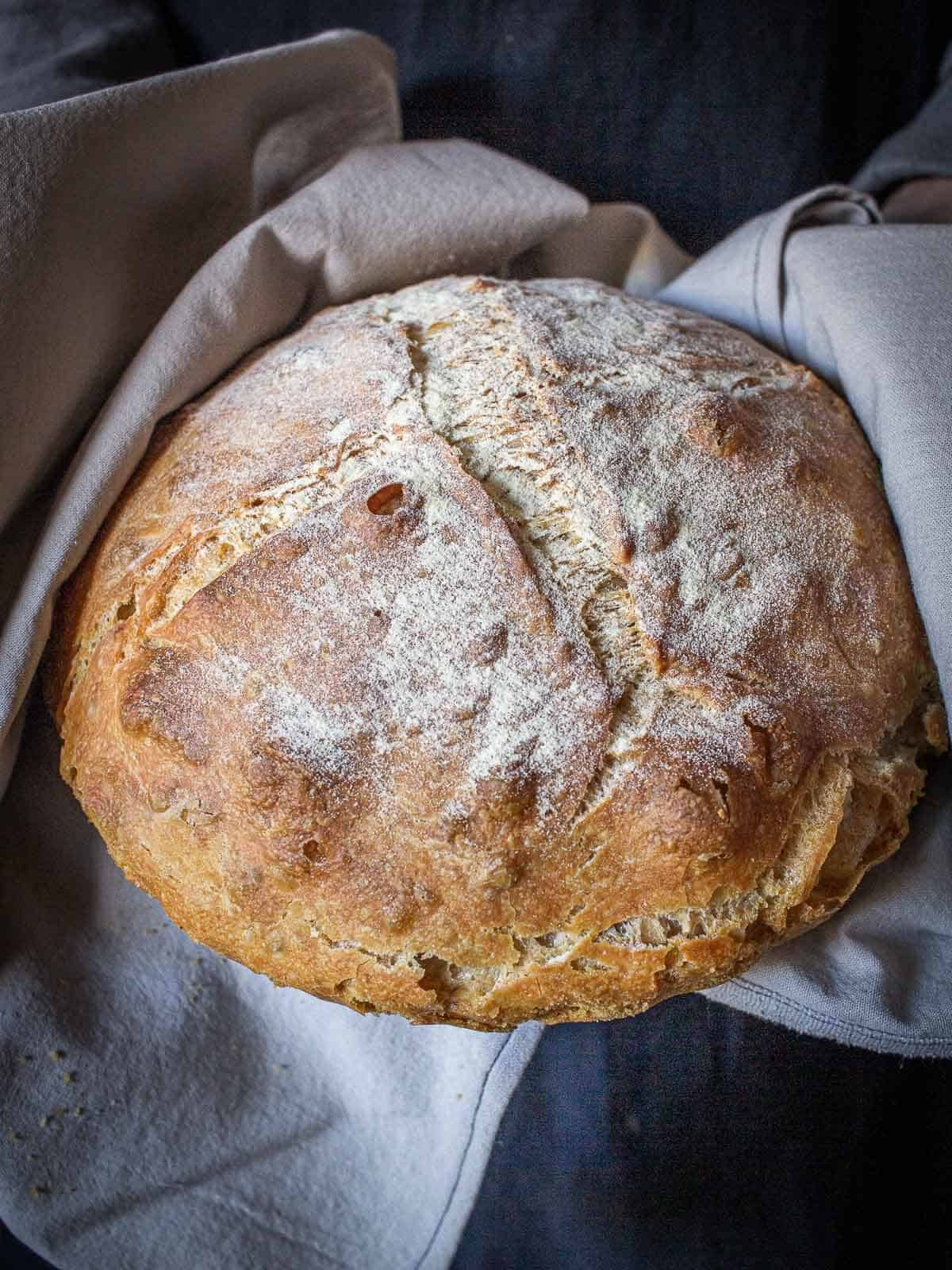 bread loaf pagnotta