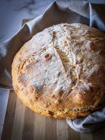 Pagnotta Bread