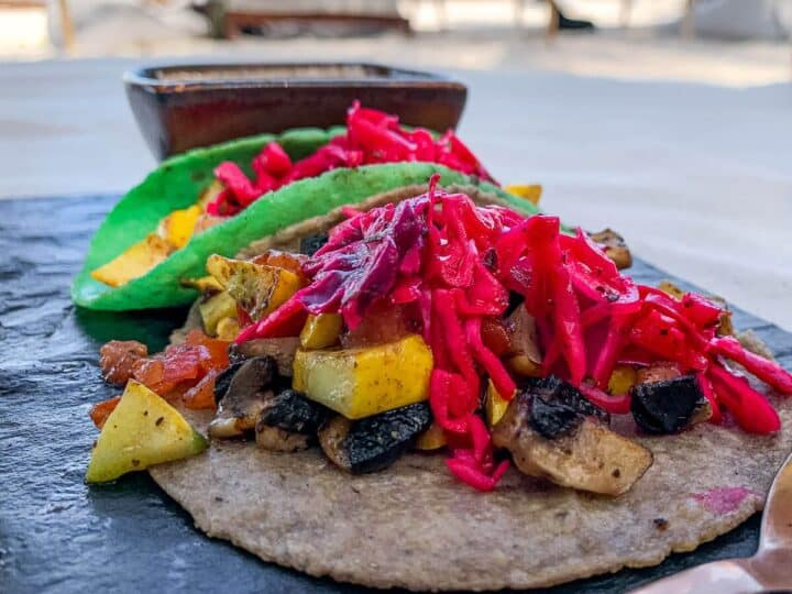 Vegan Taco at the beach