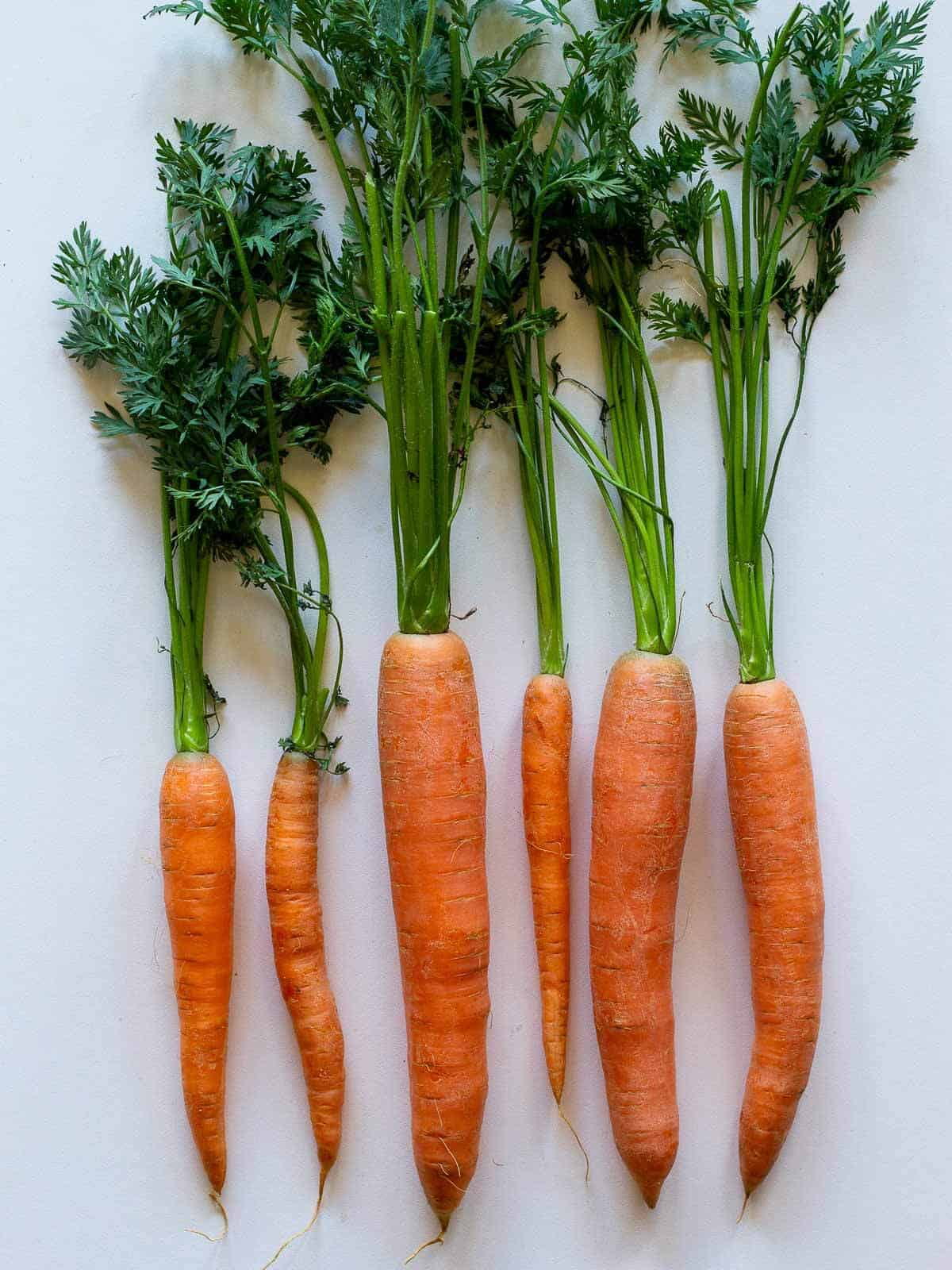 carrots white background